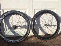 Shimano RS80 Carbon Wheels for Sale