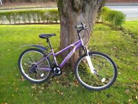 Ladies cycle, great condition