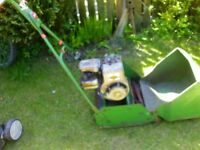 petrol lawn mowers rotary and cylinder