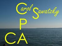 Carol Sawatzky, CPA, CA – Personal & Corporate Tax & Accounting