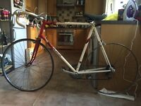 Raleigh Bikes for sale ! Urgent!