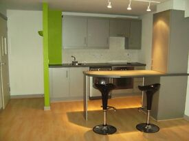 2 x 1 bedroom apartments, Central Bangor with Shared Roof Terrace