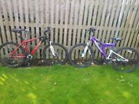 Two almost new bikes rode once.