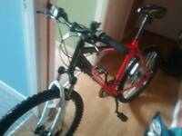 Apollo PHASE mountain bike