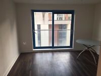 Furnished 1 bed flat opposite the Royal Docks and cable cars going into Greenwich, 2 mins to DLR