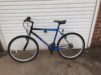 "Mens 21"" Fusion Mountain Bike"