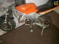 Mini moto 49cc start & rides