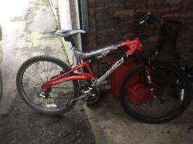 Mountain bike in good order