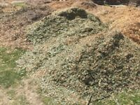 Woodchip Wood chip for sale nr Brighton Sussex