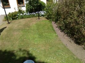 Grass and Hedge cutting service