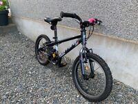 Children's carrera bike