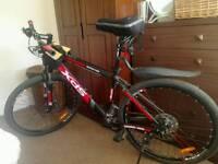 quality bike