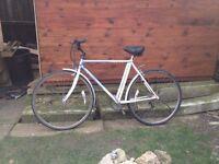 Men's Raleigh Vintage Road Bike