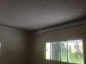 1 Bedroom near  Downtown February Rent $500.00