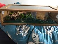 Reptile cage 2ft