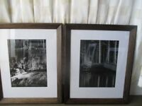 MODERN HEAVY DARK WOOD FRAMED BLACK AND WHITE PHOTO PRINTS PICTURES PINE TREES, RIVER RAPIDS