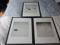 Set of 3 framed black and white photographs