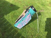Ladies ping golf bag