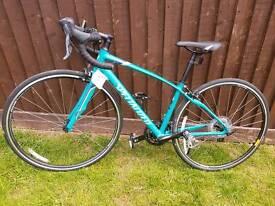 Speacilized dolce road bike