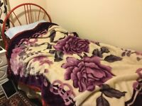 Single bed free to collect