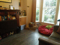 Single rooms in beautiful tree-lined street near Ormeau shops. Short term let an option.