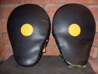 golds gym boxing pads
