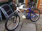 Bike Kona