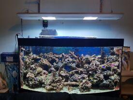 4ft AquaMedic Marine Halide Light 2x 150w Bulbs, Complete with hanging kit.