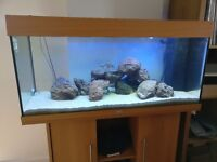 JUWEL Rio 180 Tank with Cabinet (Beech) - FULLY EQUIPPED - Filters, Rocks, Sand and more!