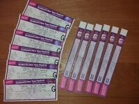 Paolo Nutini Garden Part Tickets 31st December Hogmany - 2 off