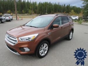 2017 Ford Escape SE All Wheel Drive - 46,793 KMs - 5 Passenger