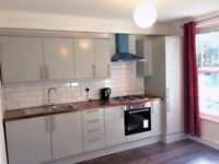 Newly refurbished 1 bedroom flat in New Cross