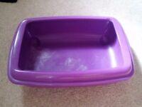Purple Kittens Litter Tray