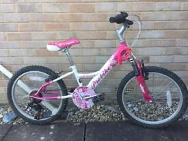"Girls bike - pink 20"" alloys, 6-10yrs, 6 speed gripshift gears, front suspension."