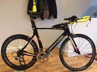 Cannondale Slice 5 Triathlon Bike