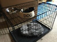 Brand New medium dog crate & accessorles For Sale