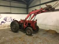 Massey ferguson in Scotland | Plant & Tractor Equipment for