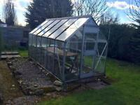 Large Green House 12ft x 6ft
