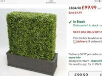 WANTED - ARTIFICIAL BOX HEDGING TOPIARY WALL