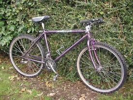 claud butler animal,reynolds 653 limited edition 21 speed,very lightweight