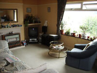 Room [shared] with sofabed, Paignton [also convenient for Totnes].