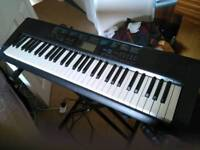 Casio ctk1200