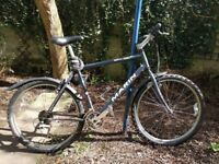 Great Marin bicycle