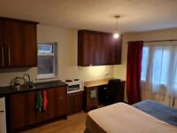 Double room near town centre for professionals