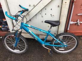 """Ammaco 20"""" bike"""