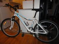 Quality RALEIGH 21 Speed Mountain Bike With Front Suspension!