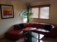 1 bedroom flat (terraced bungalow) to rent in Torry