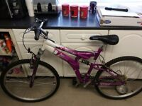 Fellia mountain bike