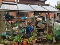 FREE sheets of glass for greenhouse spares or repairs. Must go in next few days. Macclesfield area.