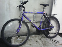 Hype Maxima Mountain Bike *Collection Only*